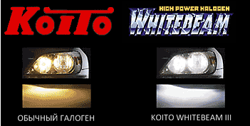 galogen lamp koito whitebeam